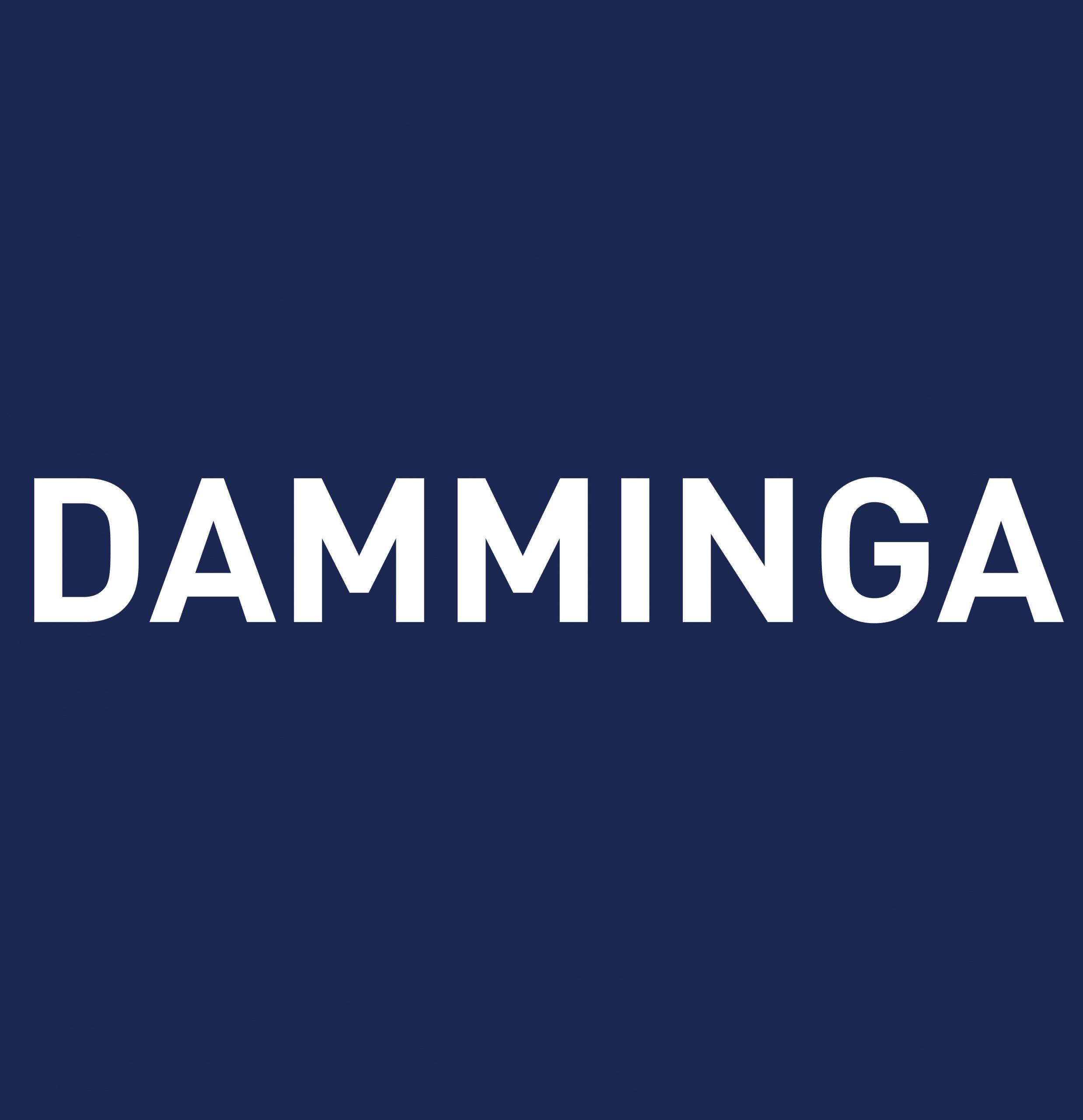 damminga logo